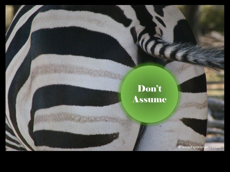Does 'Assume' Mean What You Think It Means?